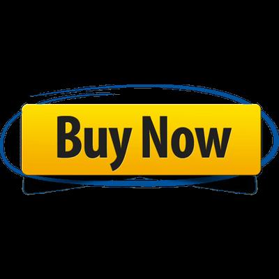 online motor insurance